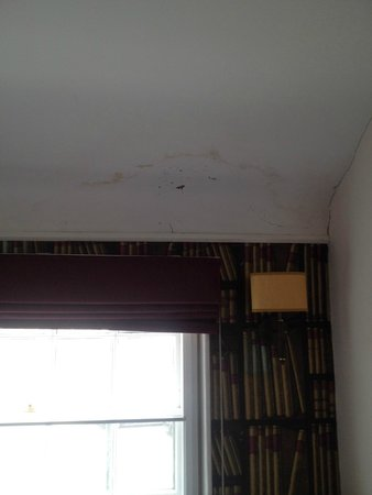 The Kings Arms Hotel : Mould in corner of room above bed
