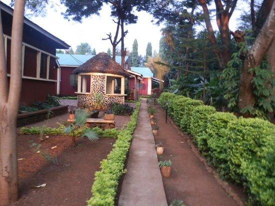 Mountain Inn: Path to rooms