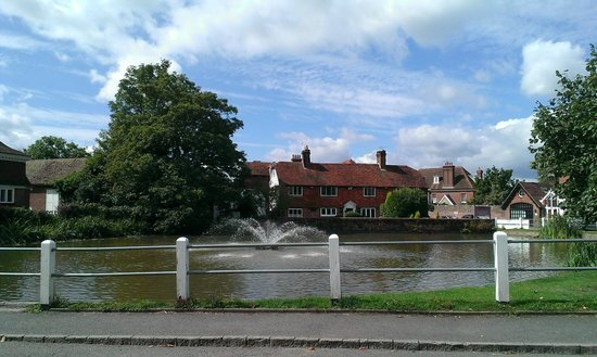 Star & Eagle Hotel: Goudhurst pond