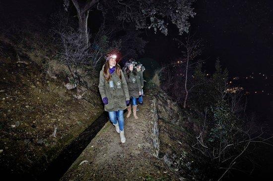 Play Granada: Night Adventure Tour Granada