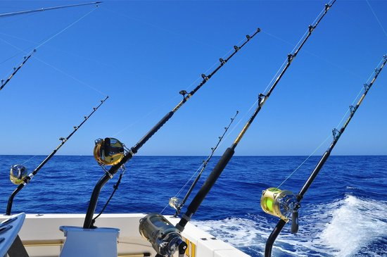 Trolling fishing picture of cavalier fishing charters Trolls fishing pole
