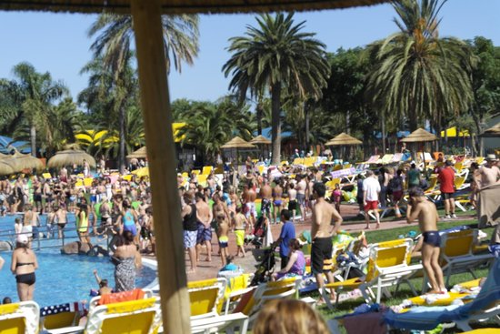 Cambrils Park Resort: Pool Area