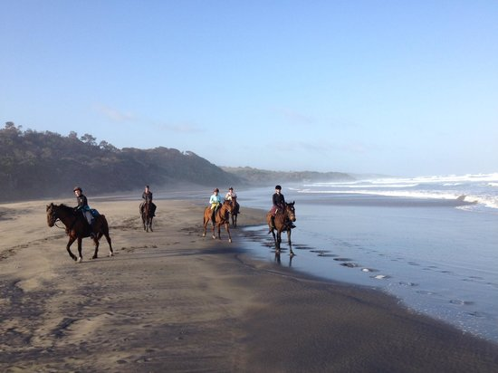 Kei Mouth Guest Lodge : Riding on the beach