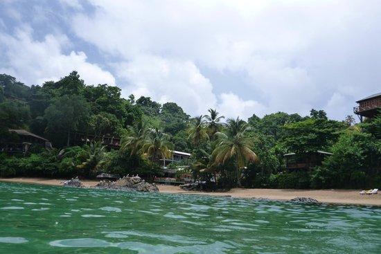 Castara Retreats: Castara