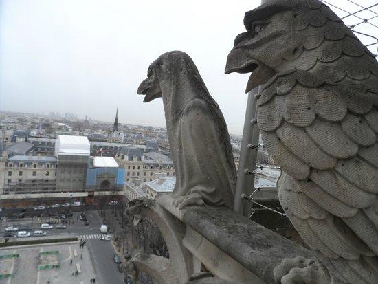 Notre-Dame de Paris: 5