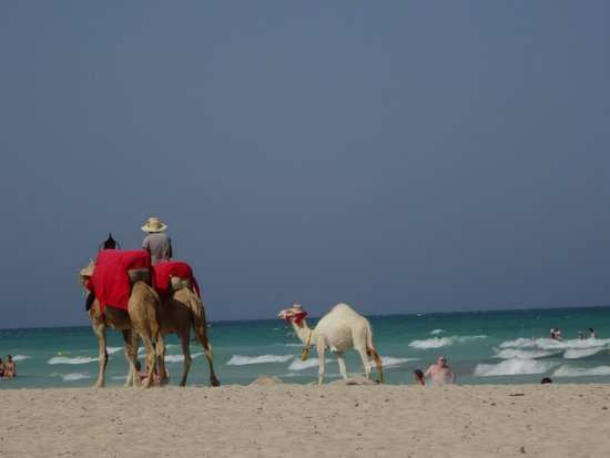 Vincci Helios Beach : plage