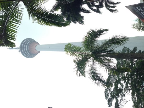 Hop on Hop Off Bus Kuala Lumpur: View of KL Tower from bus