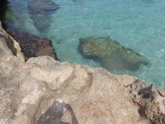 Spiaggia di Macari: mare cristallino
