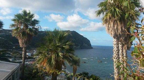 Hotel Terme Royal Palm: Panorama dalla terrazza dell'hotel