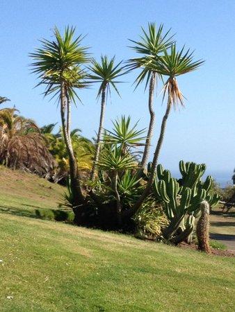 The Ritz-Carlton, Abama: sur le parcours de golf