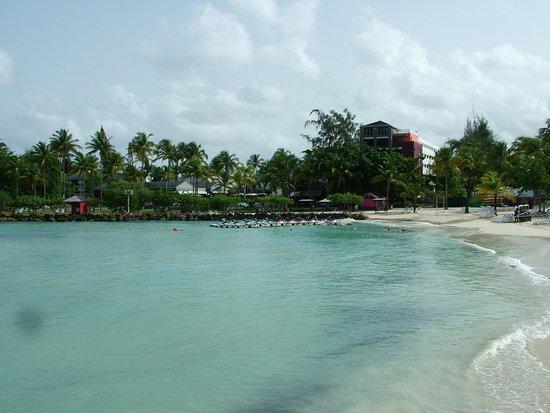 La Creole Beach Hotel & Spa: Spiaggia hotel