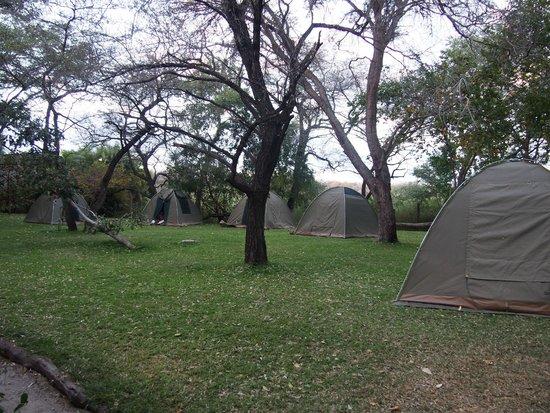Ngepi Camp: il nostro accampamento...