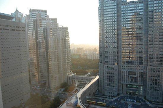 Tokyo Metropolitan Government Office : close up