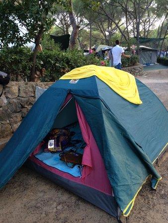 Camping Lacona Pineta: Tenda