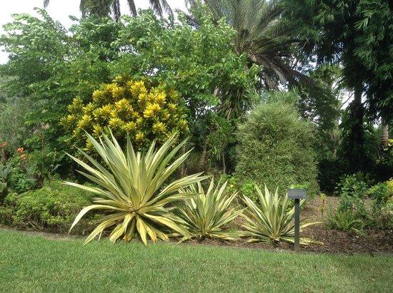 Crafts N Stuff Palm Beach Gardens