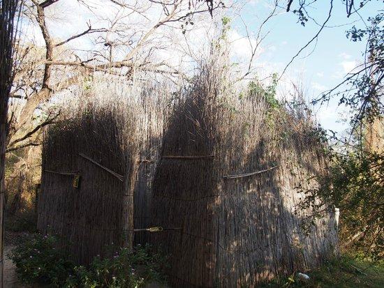 Ngepi Camp: bagno