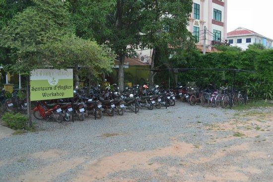 Senteurs d'Angkor: Стоянка мопедов у магазина