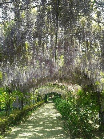 Giardino Bardini: vera poesia