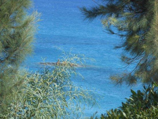 Rodos Princess Beach Hotel: Mare davanti hotel