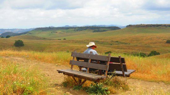 Santa Rosa Plateau Ecological Reserve: wonderful places to rest and enjoy views along the trails