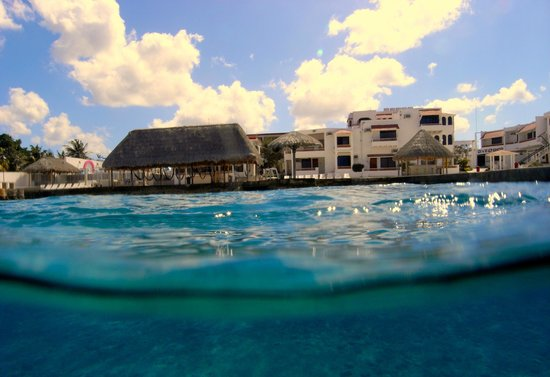 Scuba Club Cozumel : A view from the water