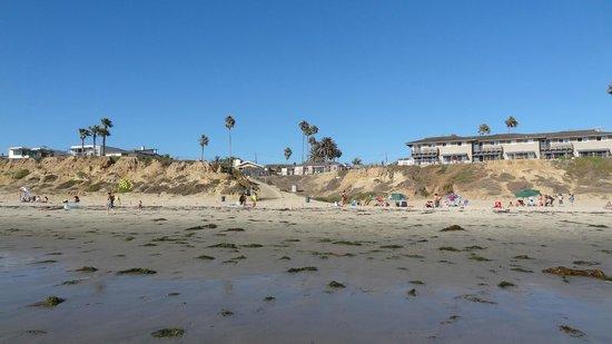 Pacific Shores Inn: het strand bij het hotel (hotel zelf ligt 100 m achter de strandwoningen)