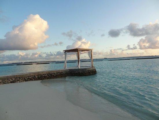 Kurumba Maldives : Honeymooner stage