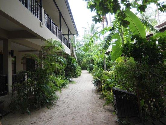 Chaweng Garden Beach Resort: The sandy walkway to the beach