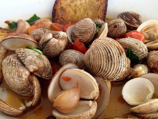 Da Maurizio al Jolly Lido: Sautè di tartufi di mare