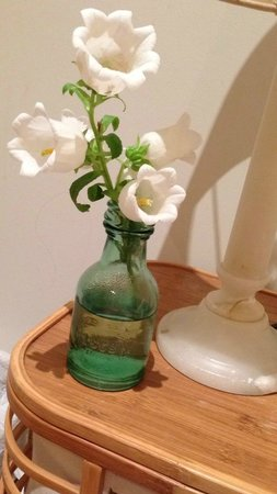 Bondi Beach House Accommodation: Fresh flowers