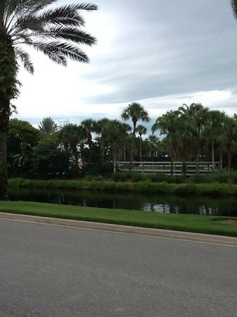 Disney's Old Key West Resort: A view across the road and waterway