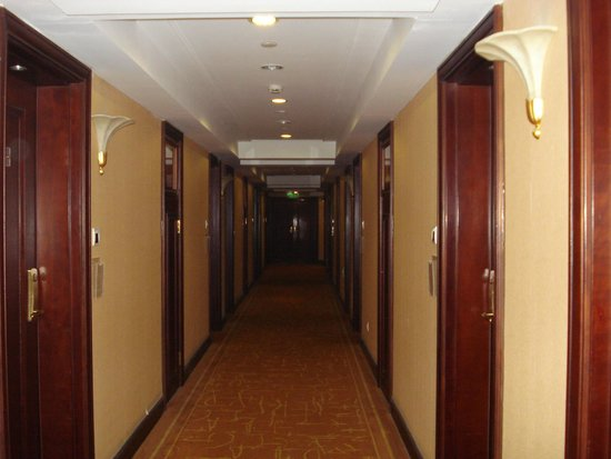 The Seagull on the Bund Hotel : коридор