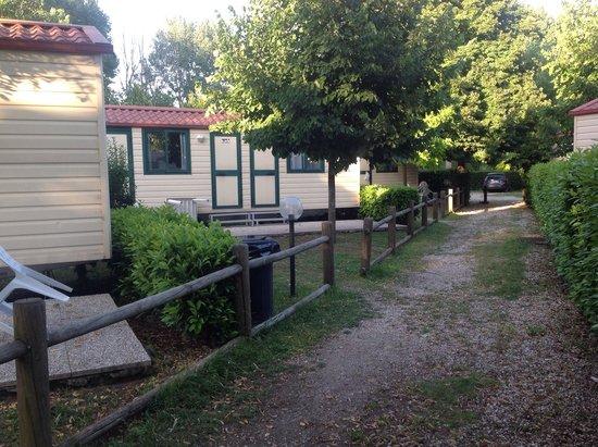 Camping Tiber: Cabins