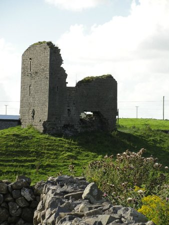 Moloney House: Ruin the house is named after