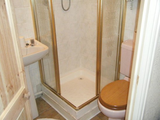Willow Grove Hotel : shower