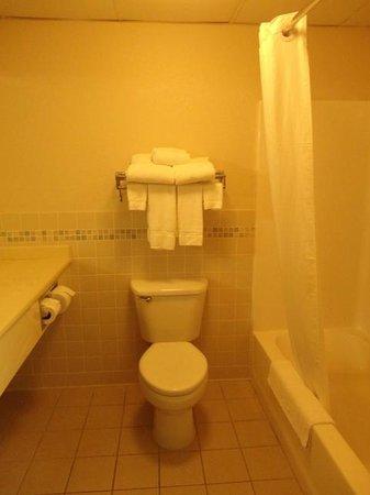 AmericInn Lodge & Suites Griswold: Room 419