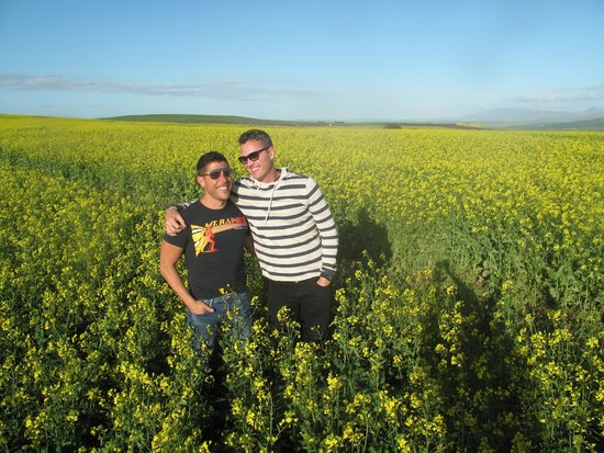 The Cape Town Tour Guide Co.: While driving, Clive spotted this beautiful field and said lets get a picture of you two.