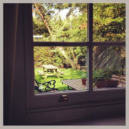 The Black Robin: View from the restaurant into the secret garden