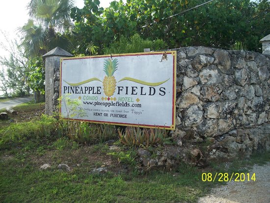 Pineapple Fields Resort: Entrance from Banks Road