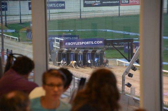 Shelbourne Park Greyhound Stadium: View from the restaurant