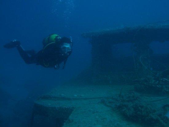 Divers' Lodge : Suzanna wreck