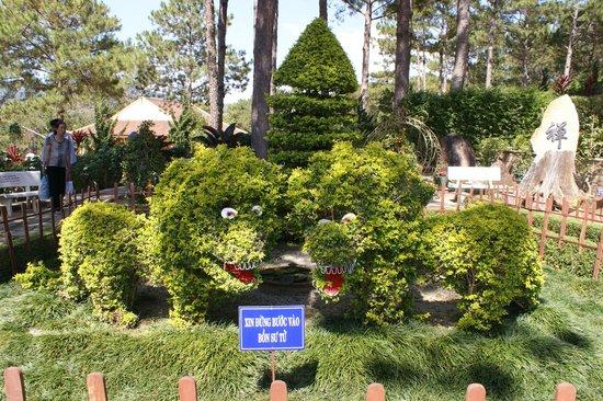 Dalat Flower Park : Dalat