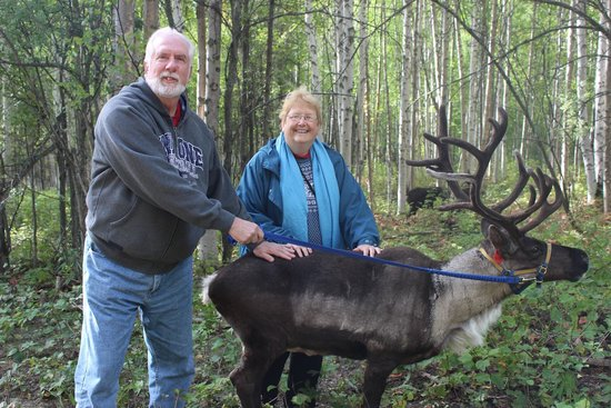 Running Reindeer Ranch: Andy and MaryAnne McFarland at Running Reindeer Farm