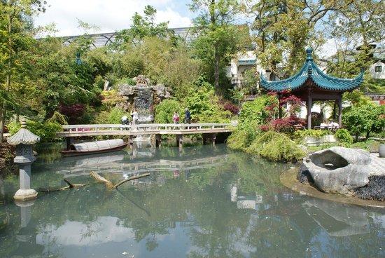 Le jardin chinois photo de pairi daiza brugelette for Jardin chinois