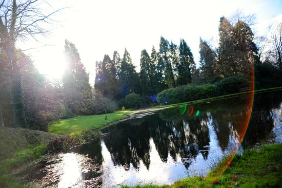 The Lake Country House & Spa: Sunrise on 7th Dec 2014