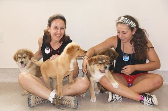 Best Friends Animal Sanctuary : Pile of puppies!