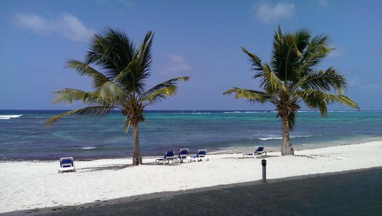 Wyndham Reef Resort: Pic off patio