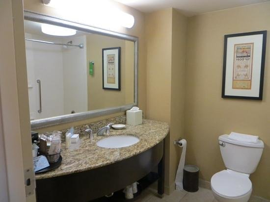 Hampton Inn Fort Lauderdale Airport North Cruise Port: bathroom