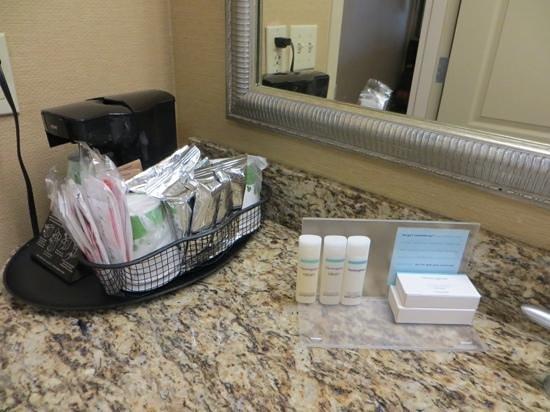 Hampton Inn Fort Lauderdale Airport North Cruise Port: amenities