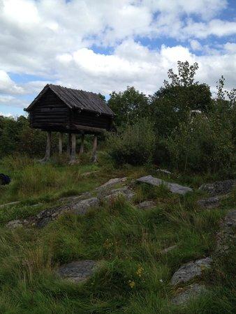 Skansen Open-Air Museum: Vistet